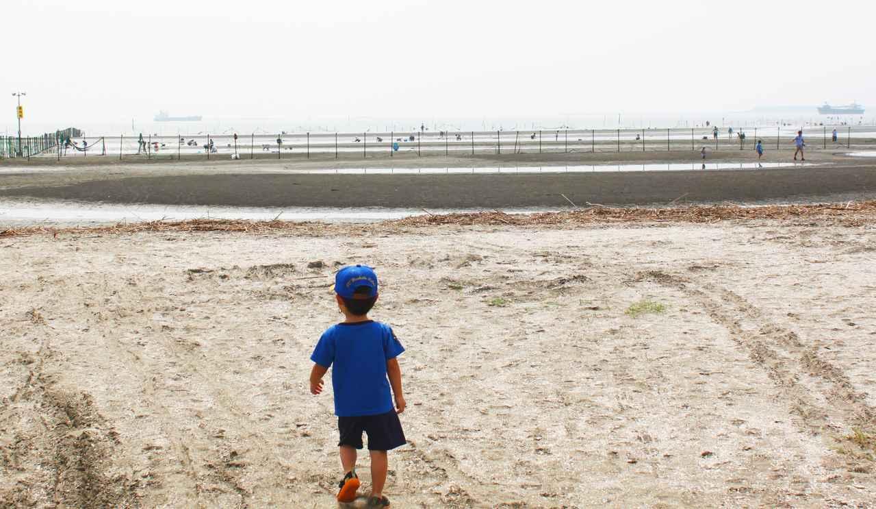 潮干狩り名人   トモンセのブログ